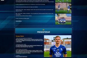 IFK-Eskilstuna-matchprogram-example